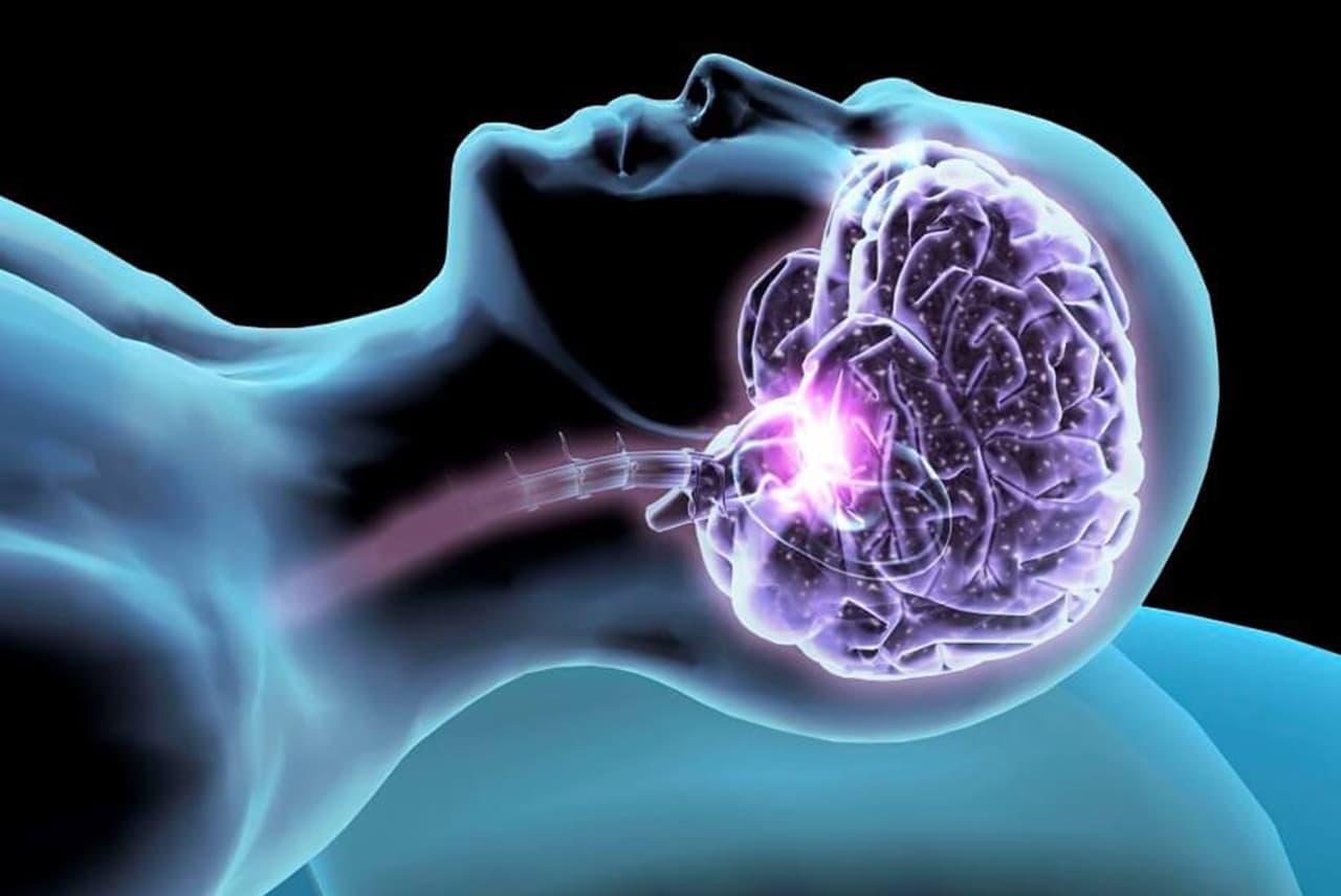 sonno-cervello-amigdala-ippocampo