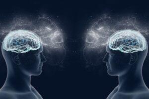 Il sistema dei neuroni specchio (mirror neuron): cos'è e come funziona